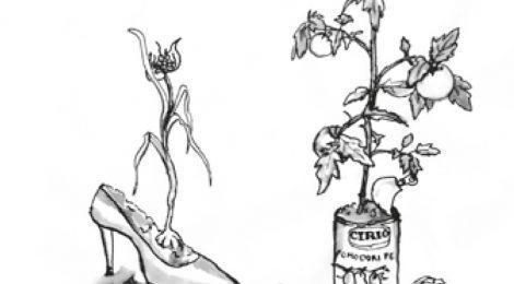 041: Das Schweizer Gärtli pflegen